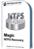 Magic NTFS Recovery 2.8 Commercial Edition Portable by TryRooM (x86-x64) (2019) {Multi/Rus}